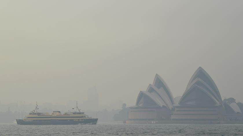 Fotogaleria. Mais de 100 fogos na Austrália cobrem país com manto de fumo