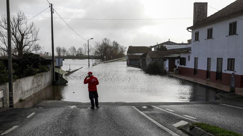 Cheias no Mondego. Balanço provisório aponta para quase quatro milhões em prejuízos