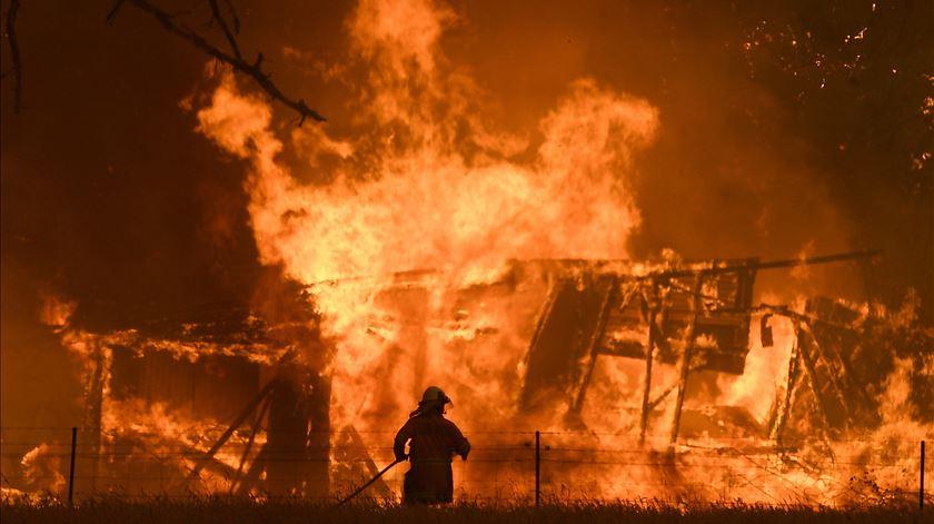 Incêndios e guerras políticas são as principais ameaças ao planeta