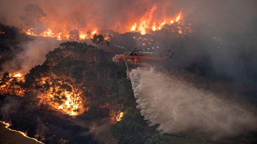 Austrália. Número total de mortos nos incêndios sobe para 20