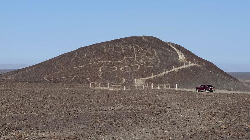 """""""Gato"""" milenar de 37 metros é o mais recente geoglifo descoberto no Peru"""