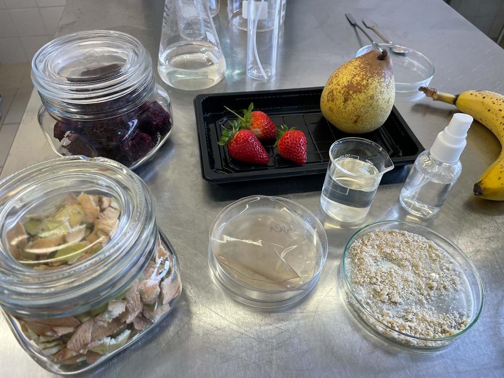 Investigadoras da Universidade de Coimbra criam embalagens comestíveis. Foto: DR