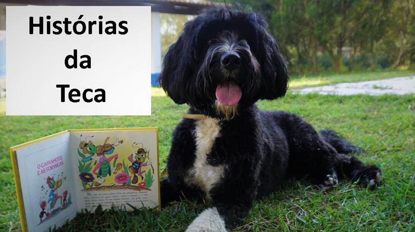 A Teca ajuda a ler e a desinibir. Foto: agrupamento de escolas Frei Gonçalo de Azevedo