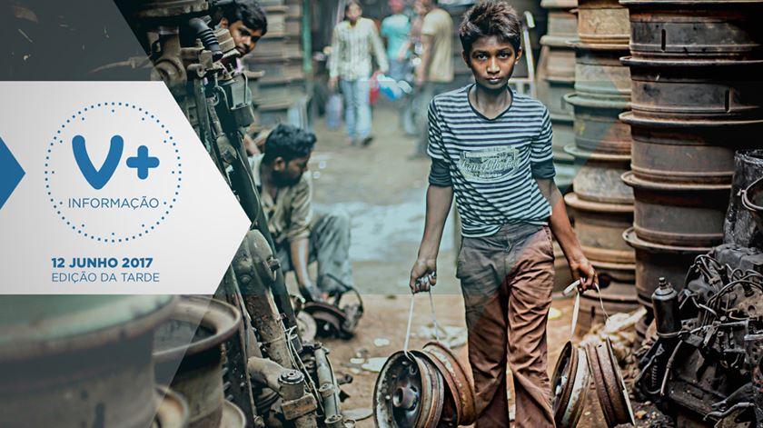 84 milhões de crianças arriscam a vida a trabalhar