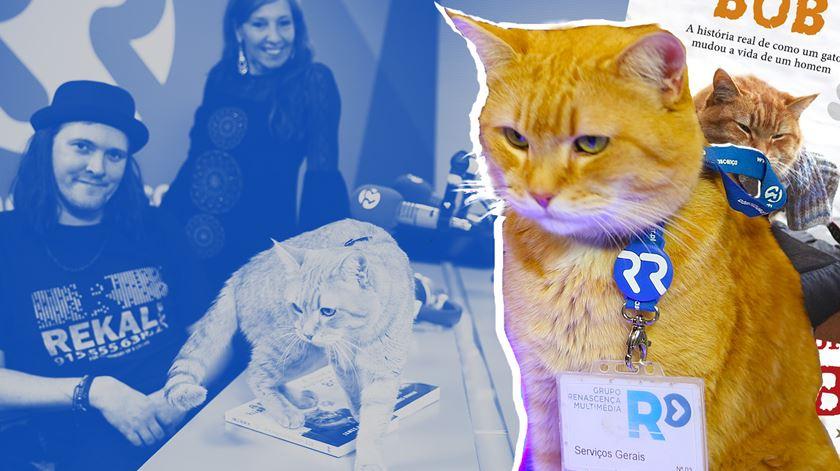 Bob, o gato, e James, o humano vieram ao estúdio da Renascença