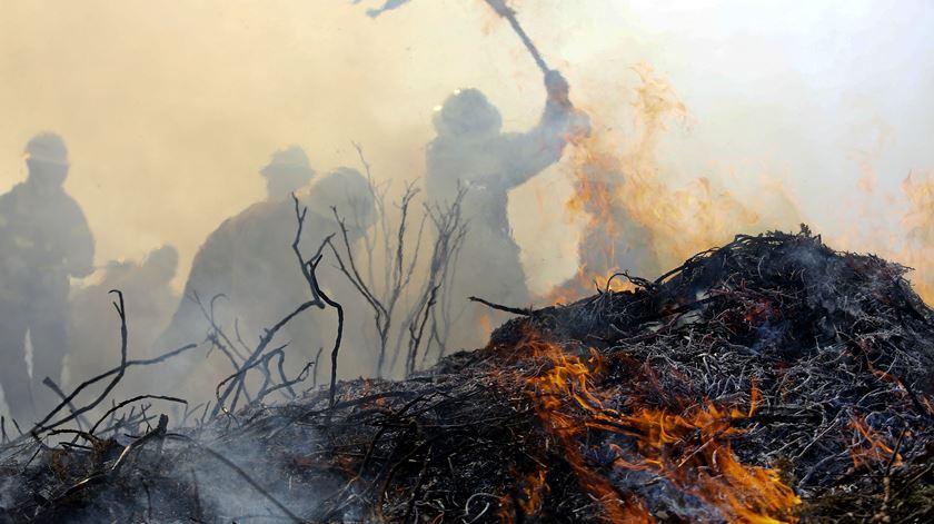 A dureza dos treinos para salvar o país das chamas