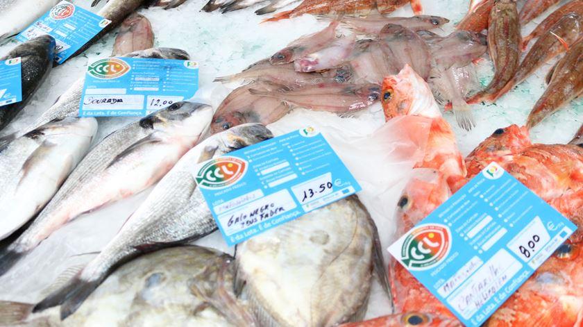 Nunca foi tão caro comprar peixe em Portugal