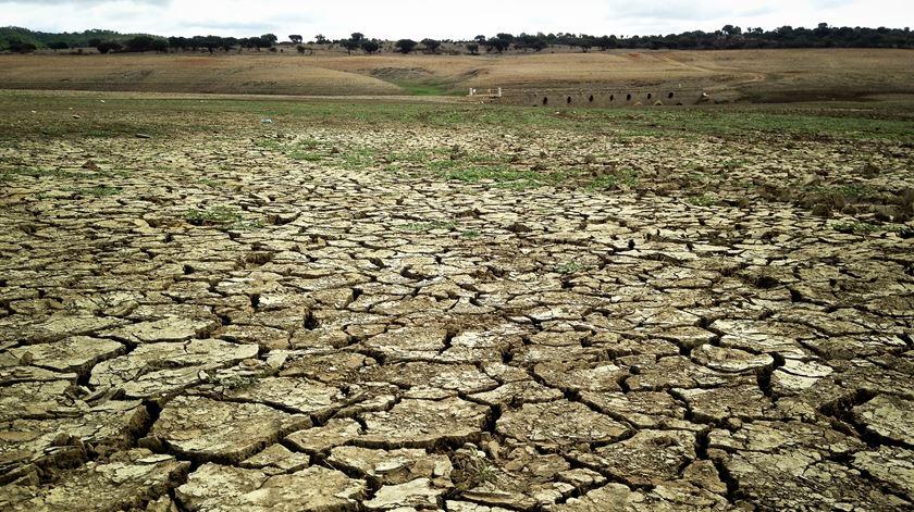 Cada vez mais períodos de seca. Foto: RR