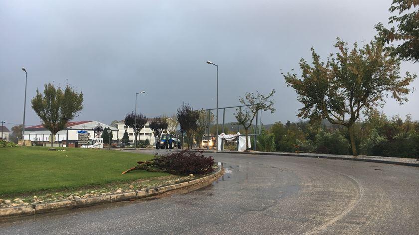 Forte chuvas em Coimbra fazem cerca de 50 inundações
