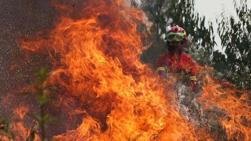 """""""Estratégia está a resultar"""". Incêndio em Sintra mobiliza mais de 300 operacionais"""