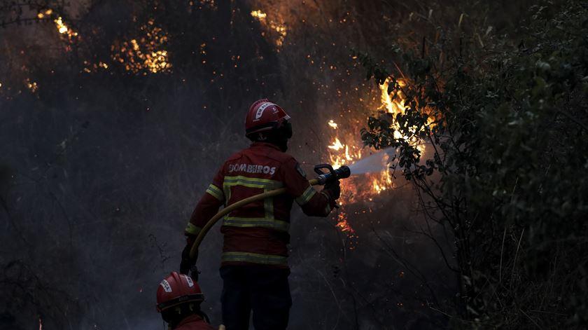 """Incêndio em Mação deixou rasto """"desolador"""" diz bispo. Foto: Paulo Novais/Lusa"""