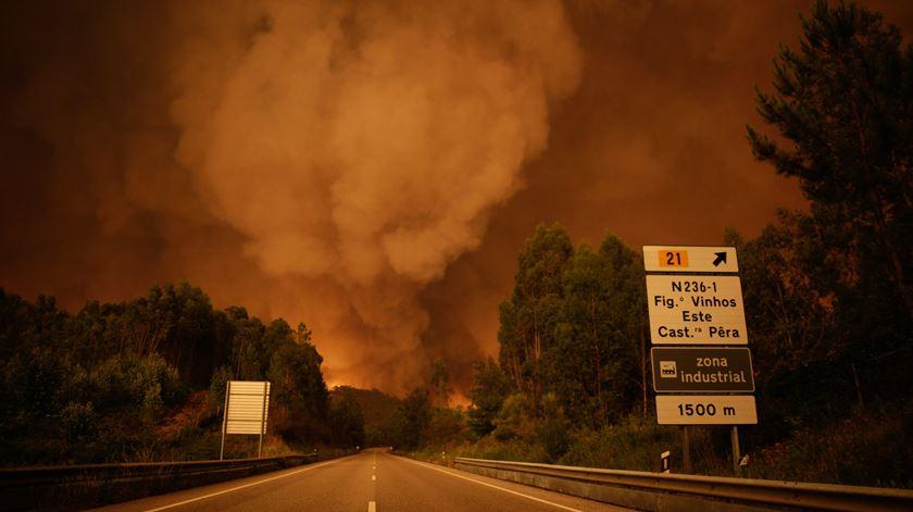 A combater o incêndio de Pedrógão Grande estão mais de 1500 bombeiros, apoiados por 12 meios aéreos e mais de 460 veículos