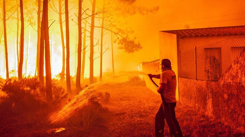 """De acordo com o presidente da Câmara da Marinha Grande, """"cerca de 80% da manta verde do Pinhal de Leiria já ardeu"""". Foto: Ricardo Graça/Lusa"""