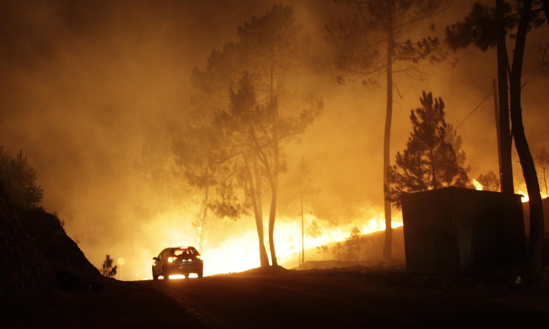 Seis principais fogos lavram em Castelo Branco, Santarém, Bragança e Vila Real
