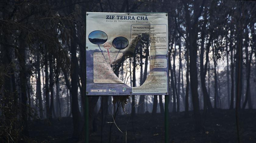 Governo apela (e dá apoios) à realização de eventos nas regiões afectadas pelos incêndios