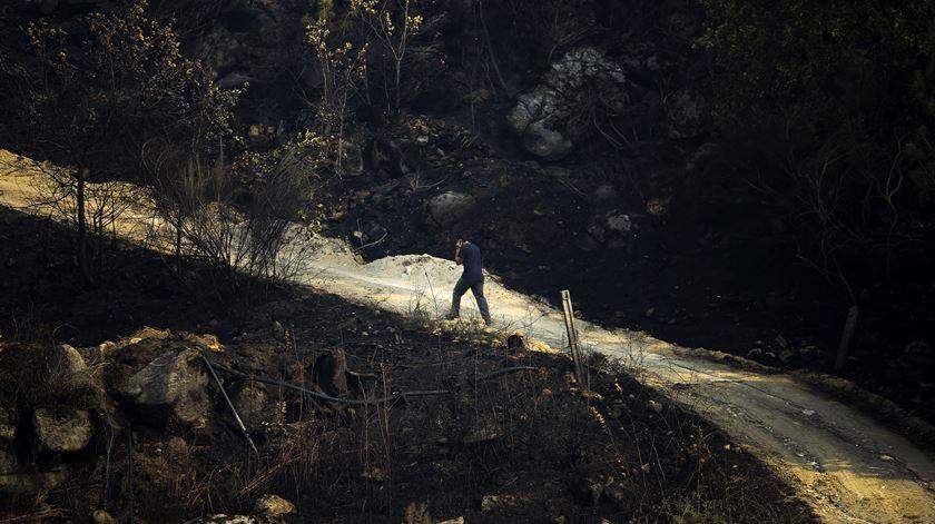 Incêndios de outubro de 2017. Muitos tiveram origem em queimadas, EDP pode ser responsável pelo da Lousã