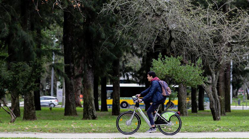 Lisboa planta 20 mil árvores no arranque da Capital Verde Europeia
