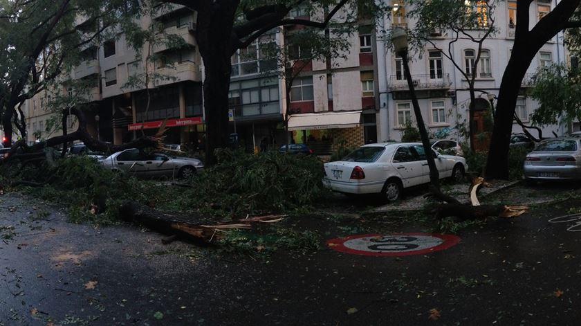 Resultado de imagem para Árvores caídas, vias cortadas e desalojados. Mais de 3 mil ocorrências em noite de temporal