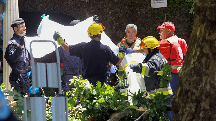 Madeira. Queda de árvore faz dezenas de mortos e feridos