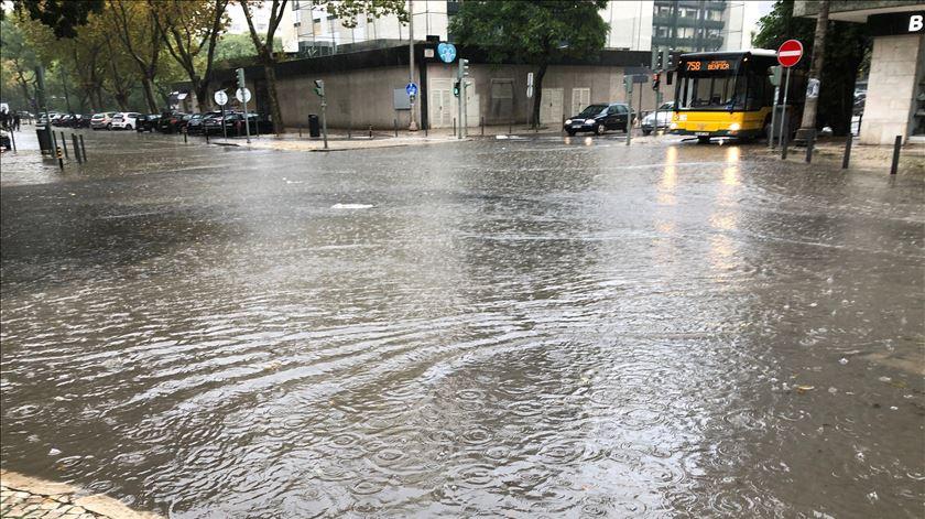 Chuva intensa provoca queda de árvores e inundações