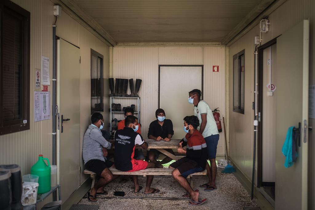 Trabalhadores indianos da empresa The Summer Berry Company Portugal, empresa agrícola de frutos vermelhos, conversam durante uma pausa para o almoço, em Odemira, Beja, 29 de março de 2021. Foto: Mário Cruz/Lusa