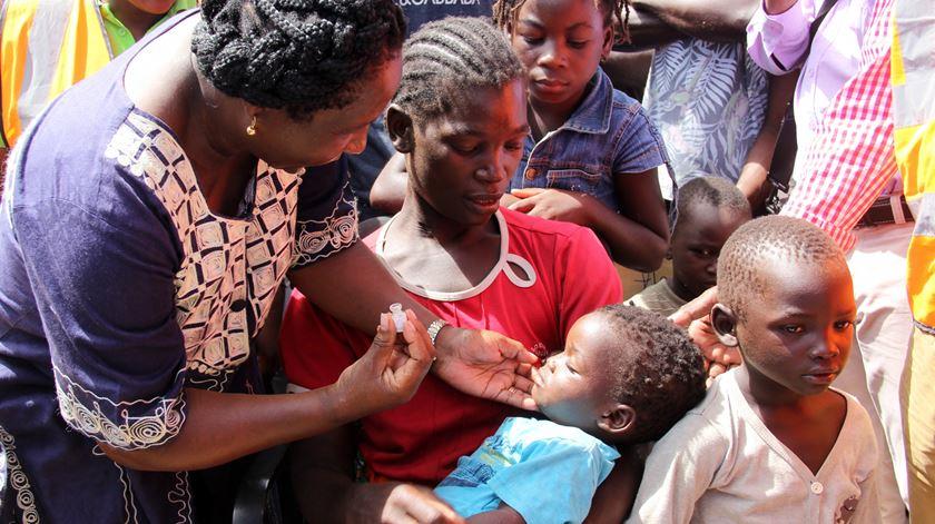 Moçambique. Mais de 800 mil já foram vacinados contra a cólera
