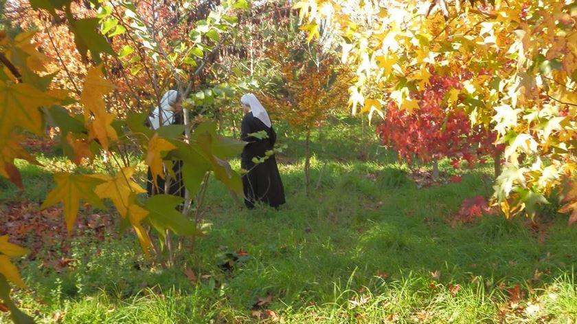 Porta Aberta para Madre Maria do Carmo Tovar