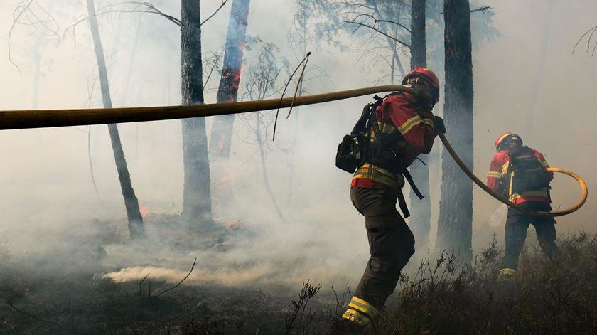 """Incêndios. Ação popular contra o Estado exige apoio para """"milhares de pessoas"""""""