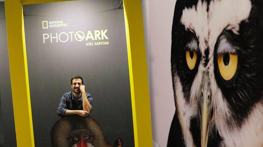 Photo Ark: como se escolhem 100 fotografias entre milhares?