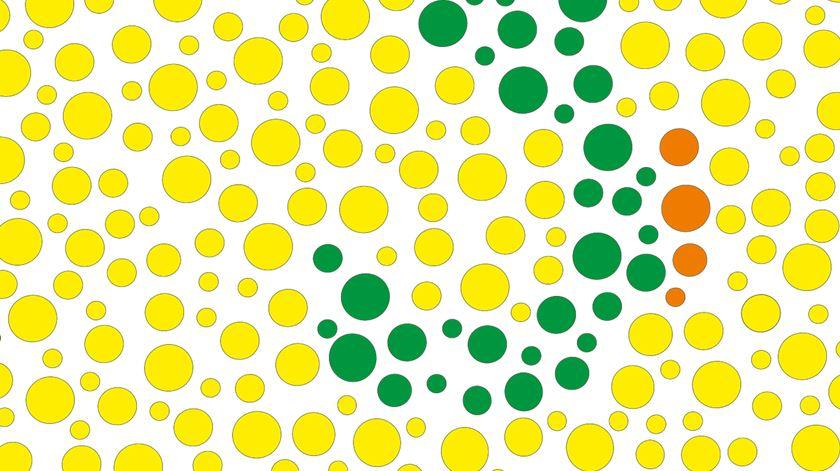 Cerca de 10% dos homens são daltónicos