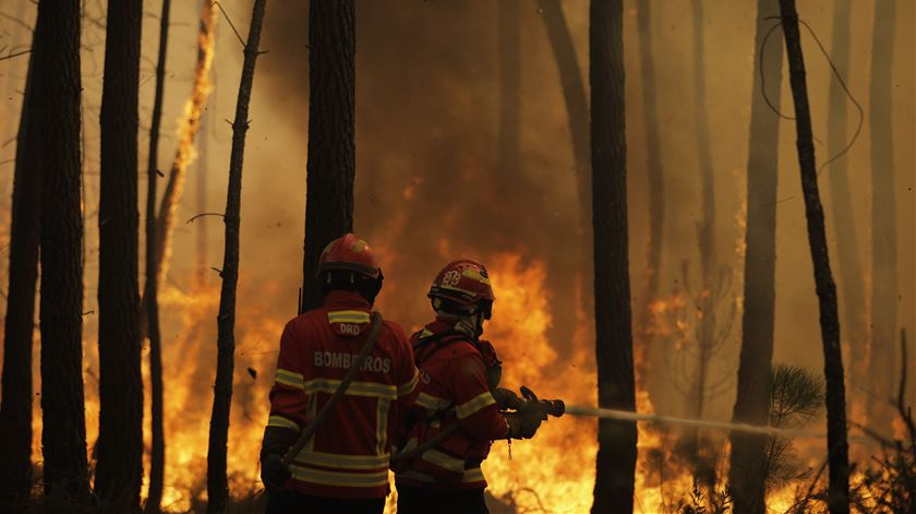 Fogo em Proença-a-Nova continua por dominar e alastra a mais dois concelhos