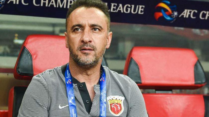 Vítor Pereira exclui-se da corrida a treinador do Everton
