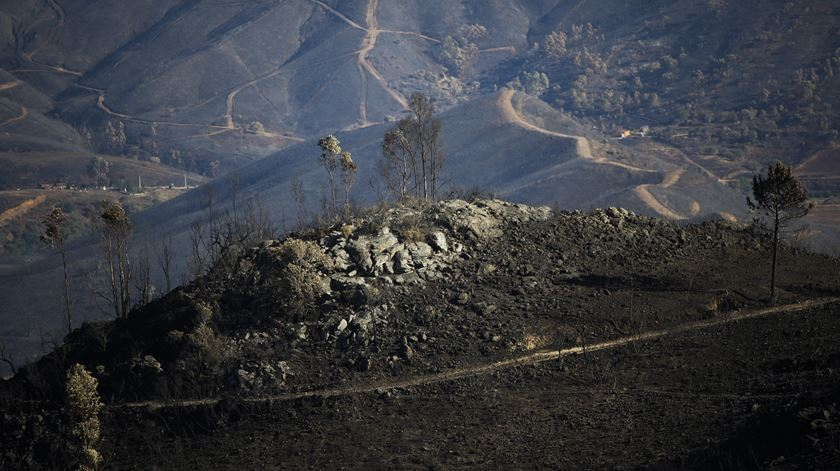 Incêndio de Monchique terá tido origem numa linha elétrica