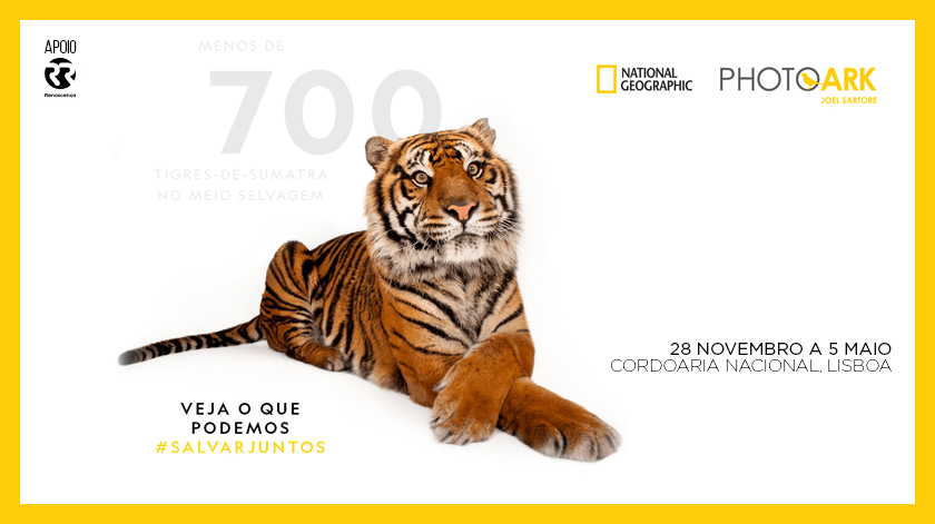 Photo Ark - Exposição Mais Vista da National Geographic está em Lisboa