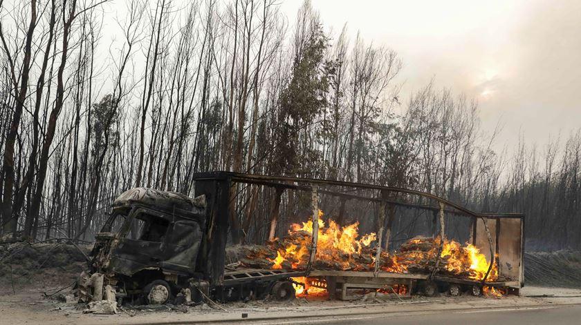 Fogos não pouparam terrenos e empresas em Oliveira do Hospital. Foto: Paulo Novais/Lusa