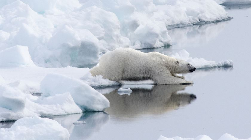 Zero graus. O Pólo Norte está 30.ºC mais quente