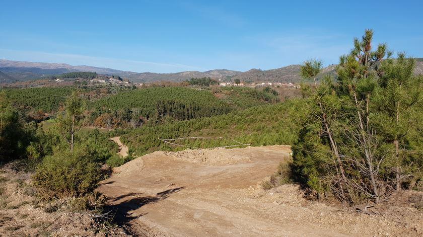 A área abrangida pela exploração é superior a 542 hectares