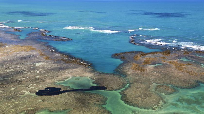 Petróleo derramado atinge área protegida de corais no Brasil