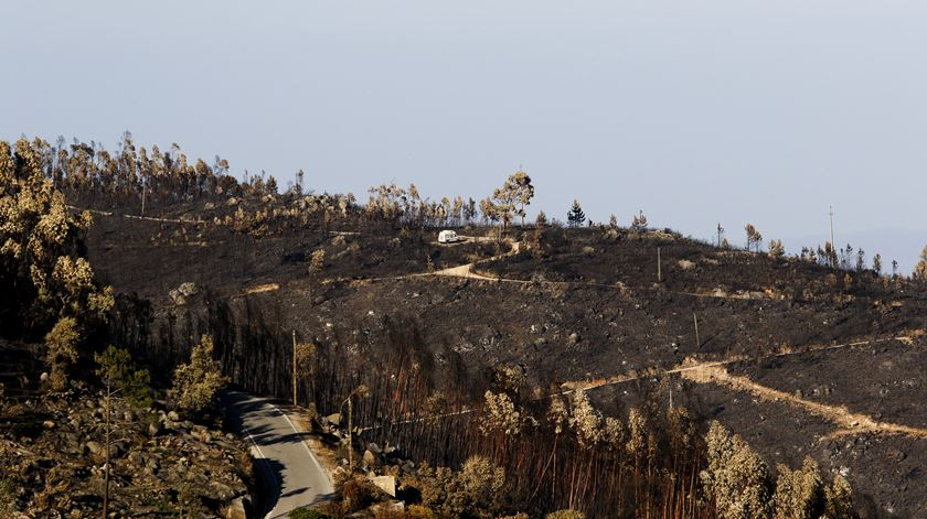 Fogo de Monchique está em fase de resolução. Quase 200 bombeiros continuam no terreno