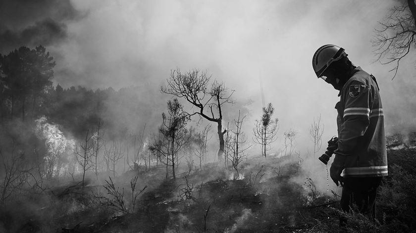 170 fotógrafos juntam-se para ajudar bombeiros de Castanheira de Pera