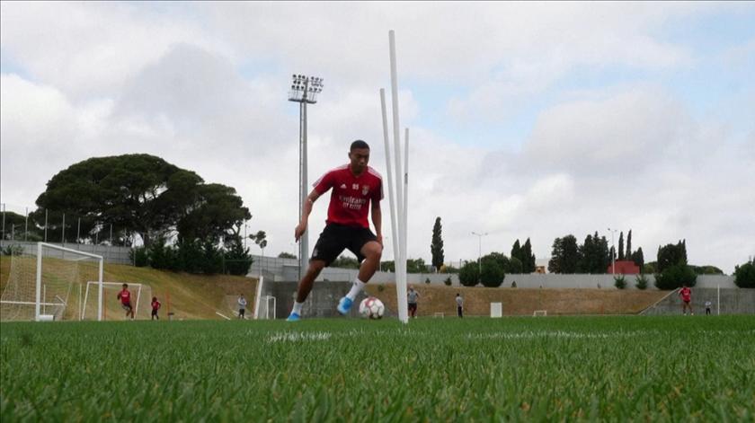 Quase dois meses depois, plantel do Benfica regressa aos treinos