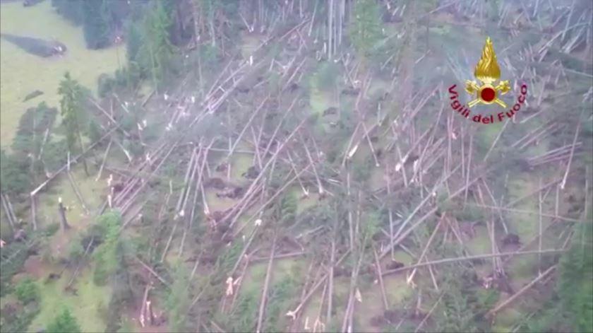 Itália. Ventos fortes derrubaram centenas de ávores