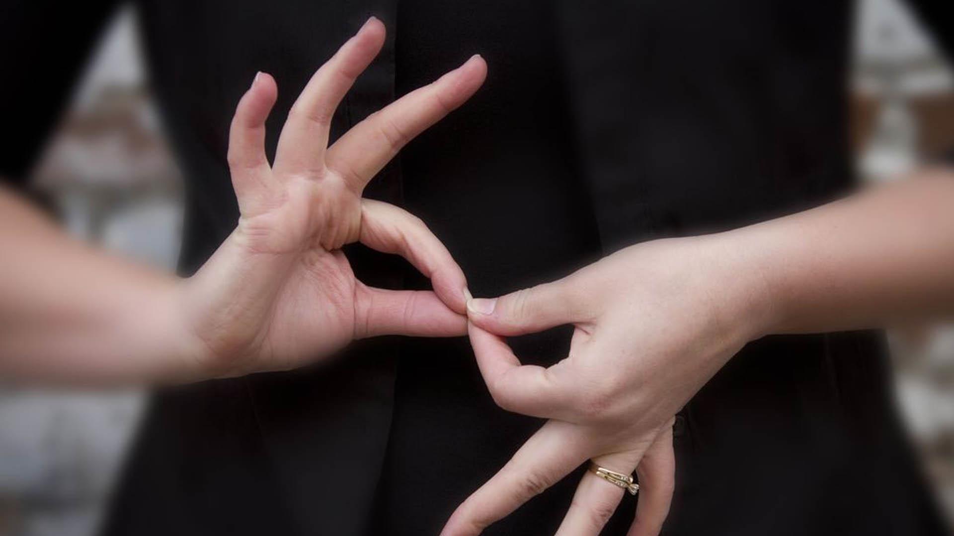 Resultado de imagem para lingua gestual