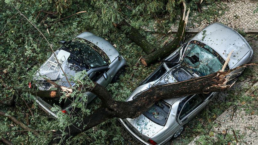 As imagens da tempestade Ana, que matou e fez estragos por todo o país