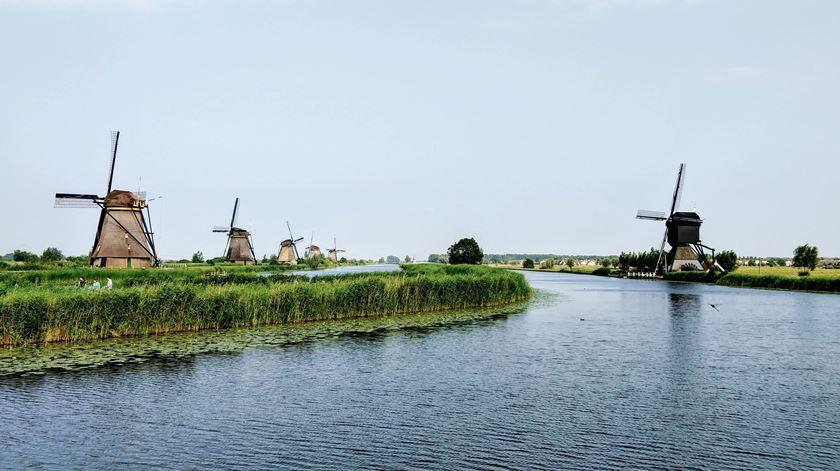 Covid-19. Contágios disparam na Holanda, mais de 5.400 novos casos na última semana