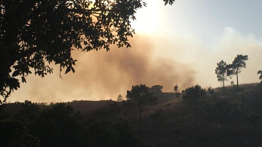 Incêndio que deflagrou em Aljezur a 19 de julho de 2019.  Foto: João Couto C.