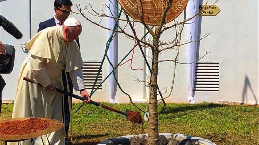 """Papa: """"A biodiversidade vegetal e animal corre perigo por causa do contrabando e das exportações ilegais"""""""