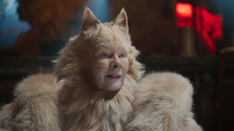CATS estreia dia 26 dezembro com a RFM