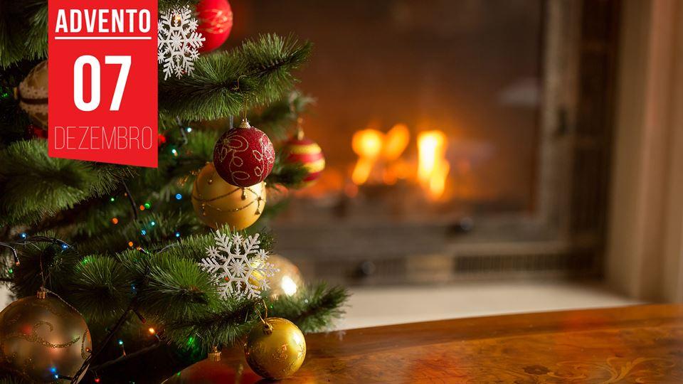 A tradição da árvore de Natal ...