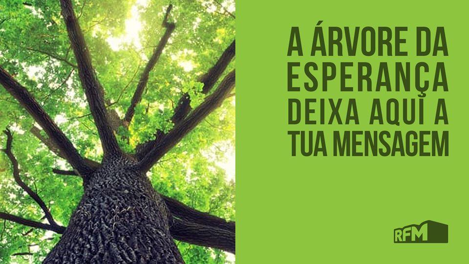 A árvore da esperança